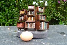 Bibliothèque en balsa contenant 96 mini-livres