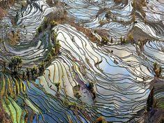 Wow! China Yuan Yang rice terraces, man made wonder!