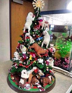 César Menotti decora árvore de natal com diversos buldogues - Portal do Dog - O maior Portal de Cachorros do Brasil
