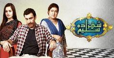 http://desiurl.com/shehzada-saleem-episode-34-ary-digital-22-march-2016.html