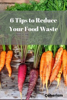 Tired of throwing away so much food? Check out these 6 tips for reducing your food waste! Reduce Waste, Zero Waste, All Fruits, Peeling Potatoes, Slow Food, Food Waste, Fruit And Veg, Sustainable Living, Organic Recipes