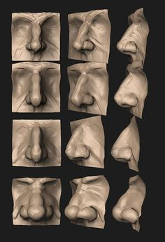 Anatomy Practice - Male Nose by HazardousArts on deviantART