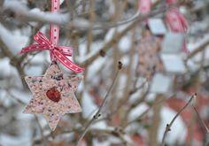 NATURKINDER: Vogelfutter Winter Diy, Winter Crafts For Kids, Craft Kids, Birdhouse, Recycling, Christmas Ornaments, Holiday Decor, Red, Bird Food