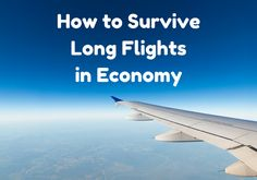 How to Survive a Long Flight in Economy