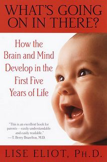 A must read for anyone interested in understanding the first 5 years of brain development.  This book dispelled some myths.  Well written and easy for parents and caregivers to read.