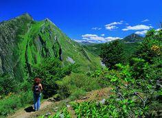 Haciendo planes para el domingo? Te proponemos disfrutar de la naturaleza haciendo #senderismo http://www.aller.es/r-senderismo pic.twitter.com/aLV0CvsAH3