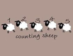 Counting sheep by debra