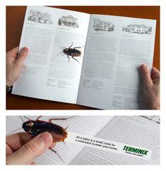 Terminix: Roach - award 2009