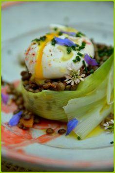 """750g vous propose la recette """"Lentilles vertes du Puy en salade et oeuf poché"""" publiée par Chef Damien."""