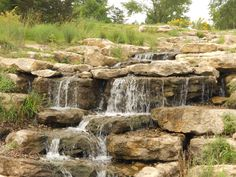 Stephens Lake Park-Columbia, MO-favorite place to walk or take the kids to the park