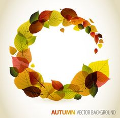 Download now Autumn Background. Find free vector graphic resources for personal and commercial use on vecto2000. High quality vector illustrations.