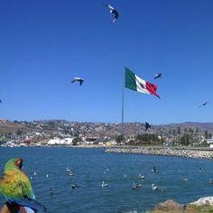 Buenos dias #Ensenada! Awesome weather for a great #BajaCaliforia weekend!  Adventure by jlynnwatkinson