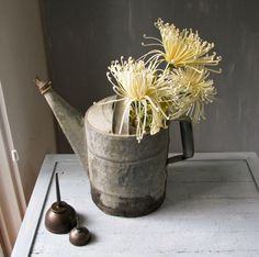 Vintage Watering Can, garden party