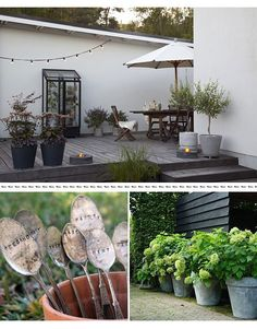 \(^o^)/ garden inspiration Outdoor Retreat, Outdoor Rooms, Outdoor Decor, Outdoor Plants, Outdoor Gardens, Terrace Garden, Farm Gardens, Outdoor Settings, Garden Inspiration