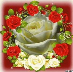 Solve art-růže jigsaw puzzle online with 64 pieces Roses Gif, Flowers Gif, Rose Images, Rose Pictures, Beautiful Gif, Beautiful Roses, Valentines Gif, Gif Photo, Special Flowers