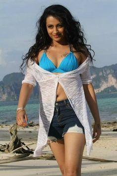 Indian Actress Hot Pics, Beautiful Indian Actress, Actress Photos, Hottest Models, Hottest Photos, Hottest Pic, Trisha Movies, Hot Actresses, Indian Actresses