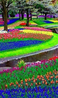 Science Discover Voyager : Rainbow of Flowers. Most Beautiful Gardens, Beautiful Flowers Garden, Love Garden, Flowers Nature, Dream Garden, Pretty Flowers, Beautiful Nature Pictures, Nature Images, Amazing Nature