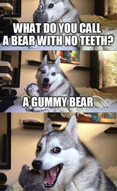 New Funny Puns Jokes Humor Laughing Harry Potter Ideas Dog Jokes, Funny Animal Jokes, Puns Jokes, Corny Jokes, Funny Dog Memes, Cute Funny Animals, Funny Animal Pictures, Animal Memes, Puns Hilarious