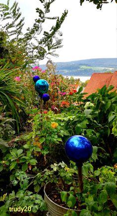 Hermann Hesse Garden with a view to the Lake Constance... Hermann Hesse, Fruit Trees, Flower Beds, Berries, Garden, Plants, Garten, Lawn And Garden, Bury
