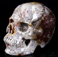 Red Crazy Lace Agate Crystal Skull by Skullis Crazy Lace Agate, Rocks And Gems, Crystal Skull, Skull And Bones, Skull Art, Rocks And Minerals, Crystals And Gemstones, Fantasy Art, Modern Art