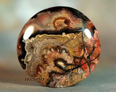 Old Stock Chihuahua Sagenite Lace Agate Cabochon