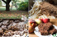 Kuchařka ze Svatojánu: RYCHLÝ JABLEČNÝ KOLÁČ Mashed Potatoes, Stuffed Mushrooms, Vegetables, Eat, Ethnic Recipes, Food, Meal, Essen, Vegetable Recipes