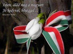 Március 15.MÁRCIUS 15. Méltóság, tartás, megemlékezés és tisztelet. Szép Ünnepeket Mindenkinek!