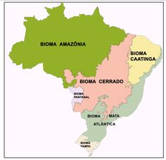 Mapa de Biomas e de Vegetação