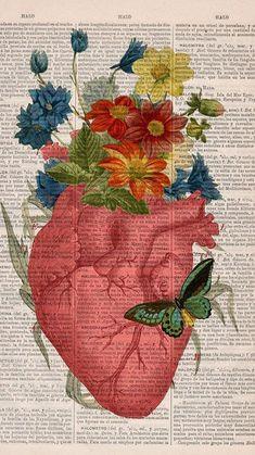 flowers lockscreens LIKE/REBLOG IF YOU SAVE AND FOLLOW ME FORE MORE EDITS. ♡ // FAVORITE/REBLOGUE SE VOCÊ SALVAR E ME SIGA PARA MAIS POSTS. ♡