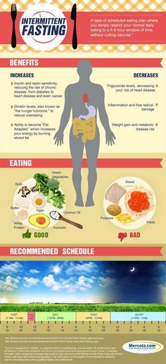 Every Other Day Diet Amazing Results