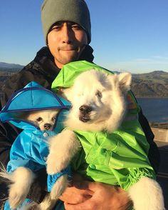 WEBSTA @ the.fluffy.duo - Dad you got us right? Hold on to my paw Zen! It's soooo wiiiindy! 🌬#ablinddogandhisbestfriend •••••••••••••••••••••••••••••••••••••••#igdogs #photographer #model #fluffy #pom #pomeranian #pomlife #rescue #dog #pups #blinddog #eskie #fluff #americaneskimo #eskie_spitz #instacool #instacute #cute #friends #ilovemydog #pawheart #viralpets #petchannel  #barkhappy #daddy #oregon