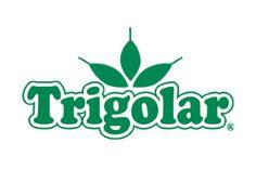 Logo Trigolar