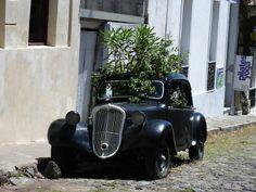 coche convertido en macetero. Más humor en www.lasfotosmasgraciosas.com