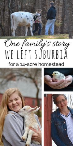 She inherited her homesteading passions from my father, a down-home country boy. And both of them were a huge part of our family's journey toward homesteading. This is our story; how we left suburbia for a 14-acre New England homestead, complete with DIY maple syrup, dairy cows, chicken, ducks, meat rabbits, and lots of simple joys that require hard work.
