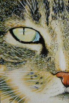 Cat #20 animal original oil painting by JP Walter, painting by artist JP Walter