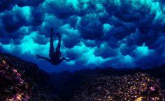 Scuba diver in the sea