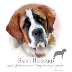f20e47de9b62 SAINT BERNARD dog fabric with Phrase on One 18 x 22 inch Fabric Panel for  Sewing. Actual picture is of 10