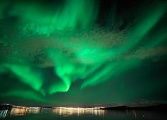 Questo 8 dicembre vivi un'esperienza unica: la ricerca dell'aurora boreale con slitta con husky in Norvegia! Pochi posti disponibili! #auroraboreale #8dicembre #norvegia #viaggioesclusivo #inverno2017 #levidedelnord