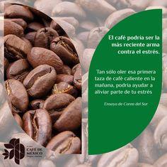 El café podría ser la mas reciente arma contra el estrés