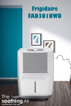 30 pint dehumidifier, best 30 pint dehumidifier, dehumidifier 30 pint, best 30 pint dehumidifier 2018, best 30 pint dehumidifier 2019, 30 pt dehumidifier, 30 pint dehumidifier reviews, 30-pint dehumidifier, best 30 pt dehumidifier, best cheap dehumidifier, best dehumidifier 30 pint Dehumidifiers, Buyers Guide, Home Appliances, House Appliances, Kitchen Appliances, Appliances