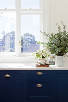 Blue cabinets.