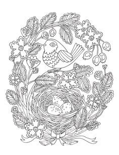 Bird and nest coloring page