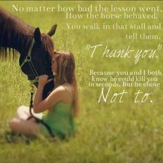 This is so true. Love your horse no matter what they do and don't just tell them you love them prove it to them.