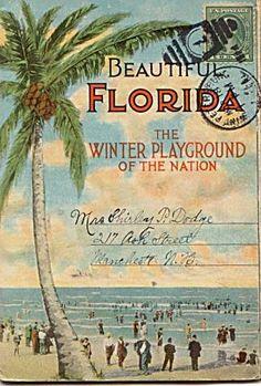 Florida op een ansichtkaart. https://www.hotelkamerveiling.nl