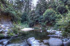 Garden of Eden, Santa Cruz Mountains