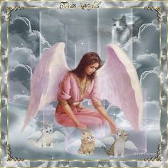 Beautiful Angels in Heaven | Do not search for us, we will find you.