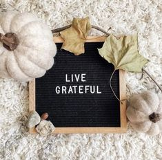 Grateful Quotes, Letter Board, Lettering, Drawing Letters, Gratitude Quotes, Brush Lettering