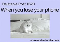When you lose your phone  . . .
