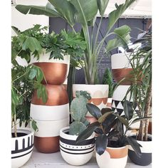 Copper dipped planters via popandscott- plants, cute, planters