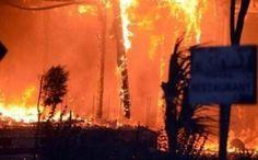 Antalya - Adrasan'da yangın kontrol altına alındı